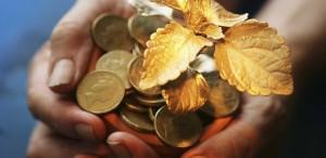 Abundance Coins